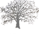 LegacyLane_Logo_Transparent.png
