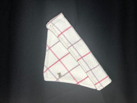 Jan 20 cream_pink check doggy bandana sm