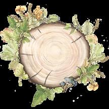 wood slice arrangement3.png
