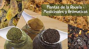 PLANTASDELAABUELA_MEDICINALESYAROMATICAS