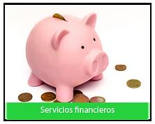 AJUSTES WEB_SERVICIOS FINANCIEROS.png