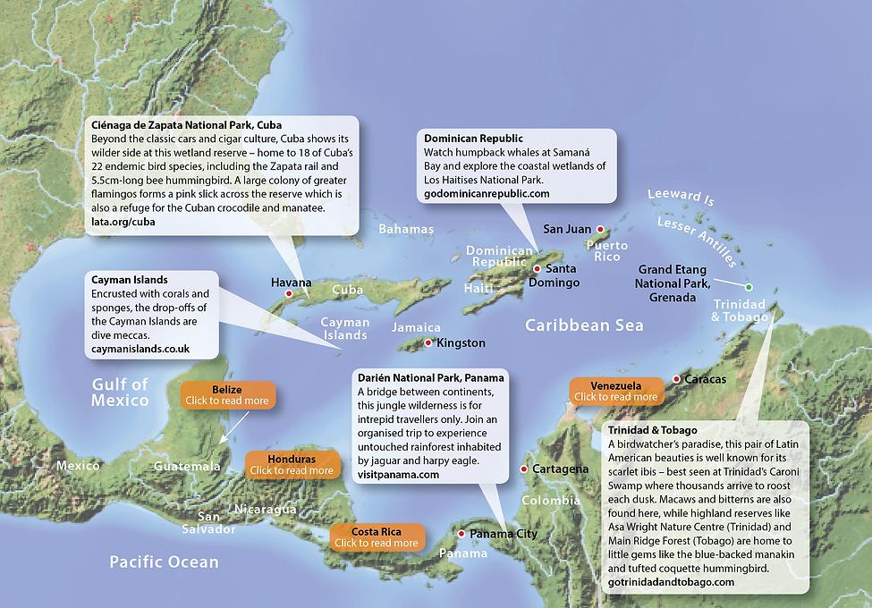 Caribbean Wildlife Destinations