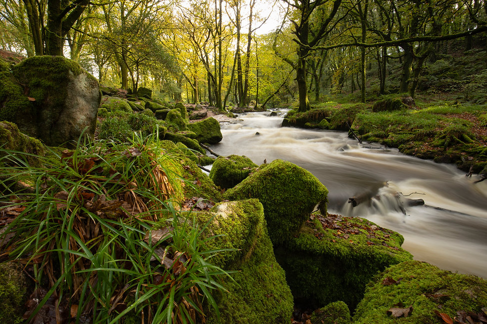 William Gray Photography -North Cornwall