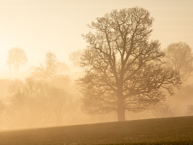Cotswolds 3hr Photography Workshops