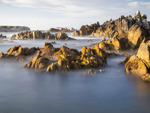 Asilomar State Beach, Monterey