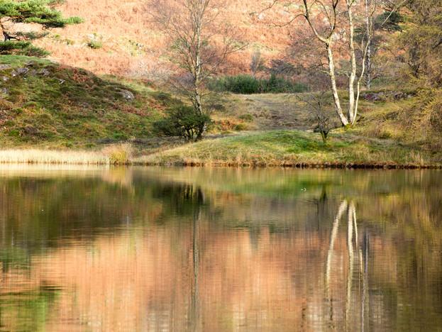 3000px Lake District-9.jpg