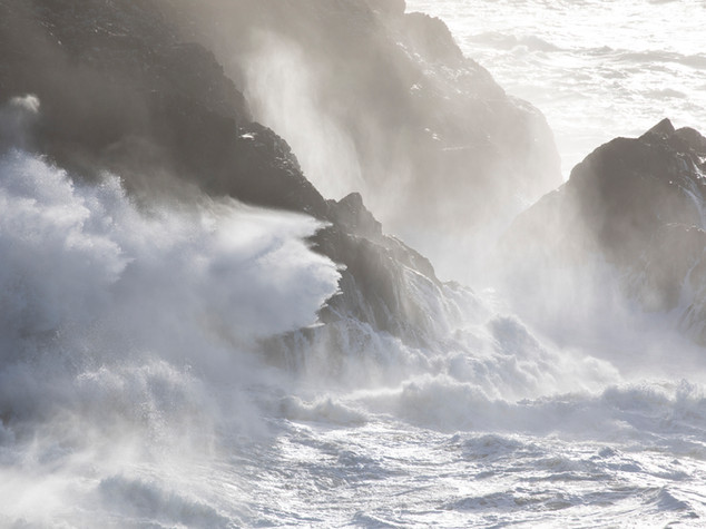 Cornwall Light in the Wild Photo Breaks