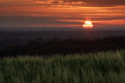 Sunset in the South Downs National Park