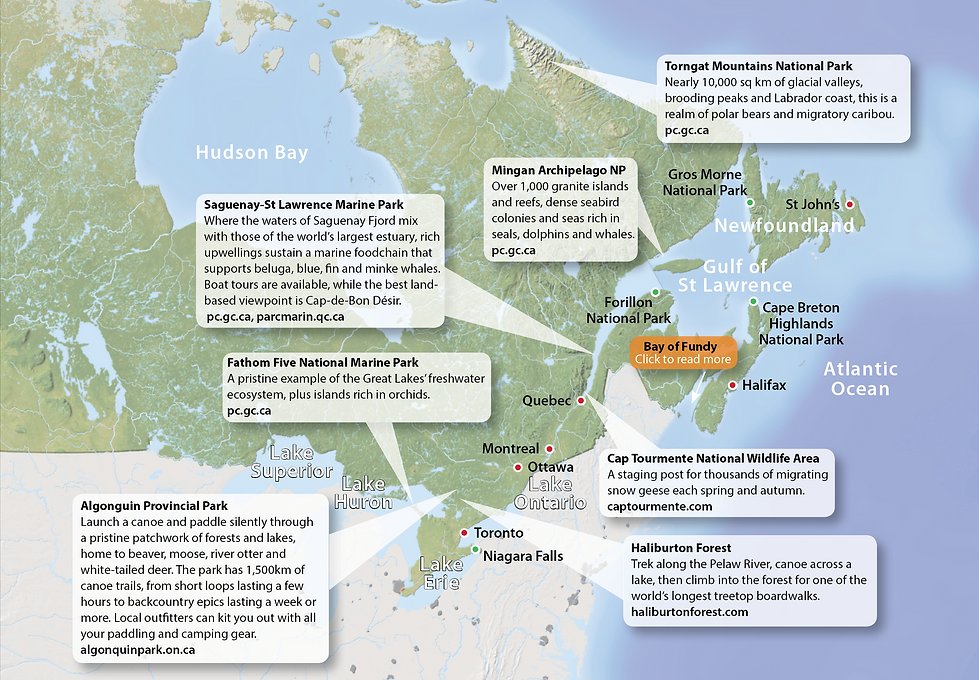 Eastern Canada Wildlife Destinations