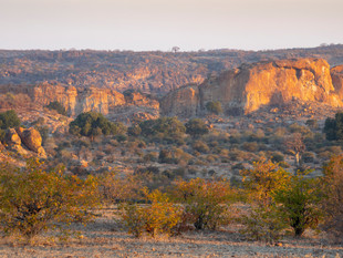 Tuli Game Reserve