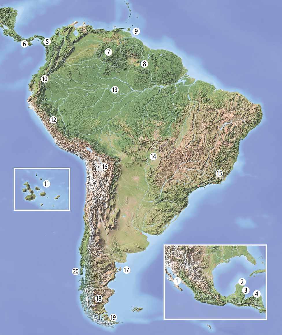 South America Wild Places.png