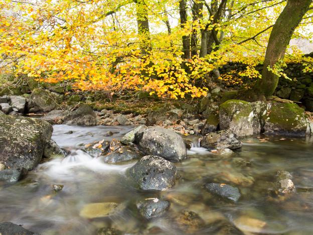 3000px Lake District-8.jpg