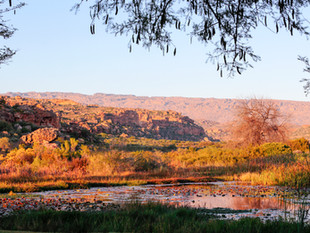 SouthAfrica-WilliamGray-66.jpg