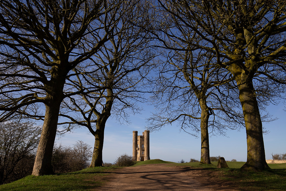 Broadway Tower framed by trees by William Gray