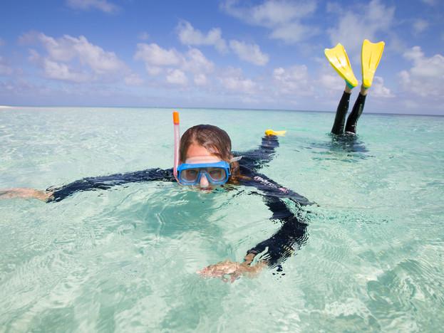 Heron Island snorkellers