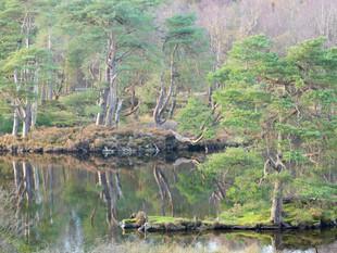 3000px Lake District-4.jpg