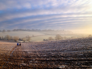 WilliamGray_Cotswolds (2 of 3).jpg