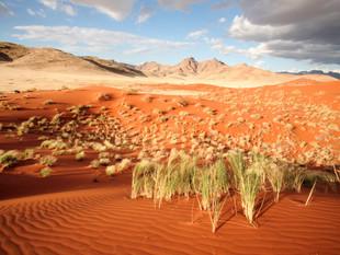 Namibia-WilliamGray-63.jpg
