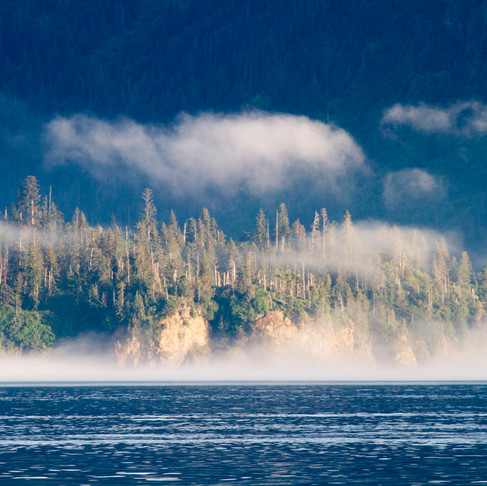 A Voyage Through Southeast Alaska