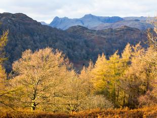 3000px Lake District-3.jpg