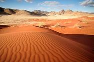 WilliamGray-Photography-NamibRand Namibi