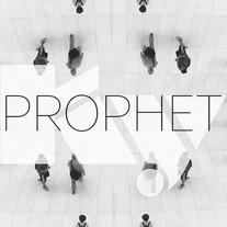 Studnitzky | KY - Prophet