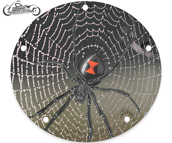 BLACK WIDOW SPIDERWEB