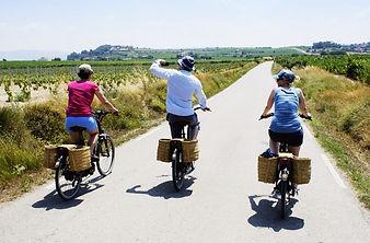 e-bike tour Penedes