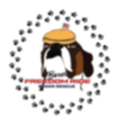BFRBR logo.JPG