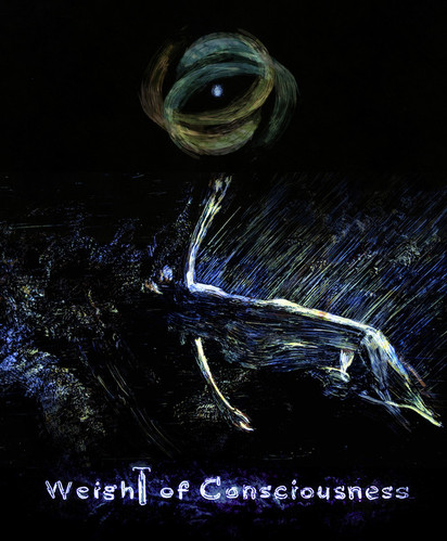 Weight Of Consciousness