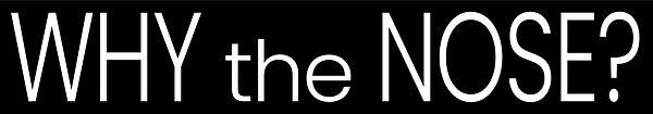 WTN_logo_white.jpg