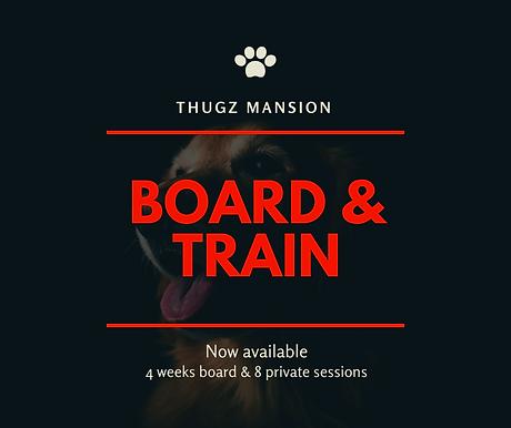 Thugz Mansion.png