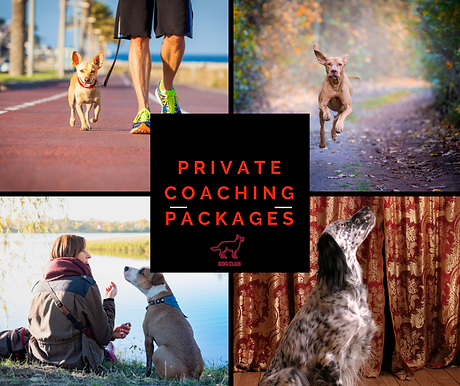 Private Coaching Packages.png