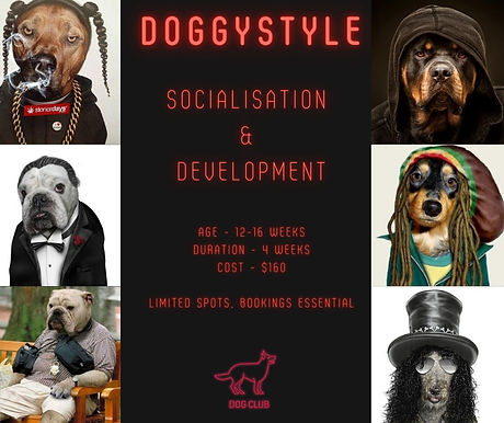 Doggystyle%20open_edited.jpg