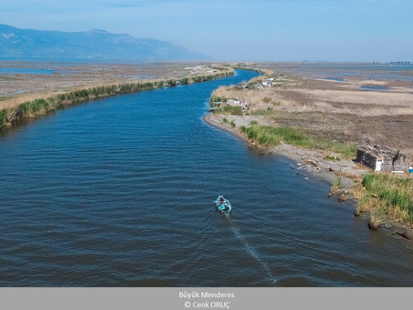 Turkey has lost as much as 3 Van Lakes of wetlands in the last 50 years!