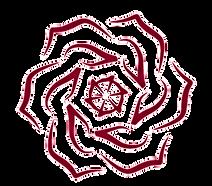 Rose, Lotus, Yoga, Meditation