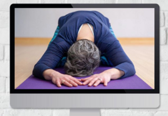 TYL_OtherLiveStreamYogaClasses.png