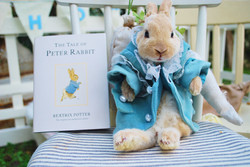Peter Rabbit is REAL