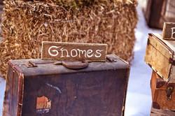 Gnomes & Vintage Suitcase