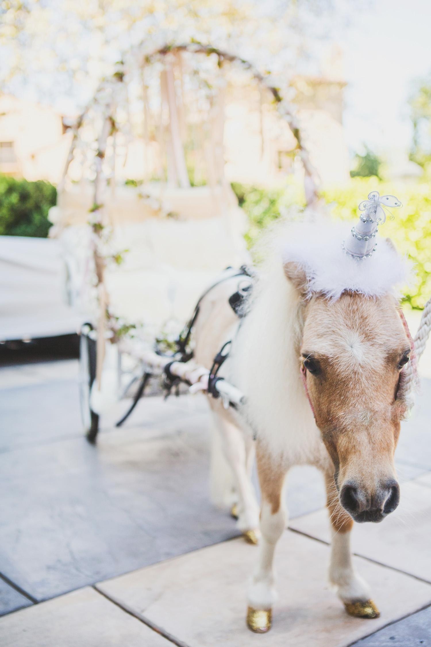 Unicorn Chauffer