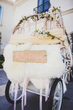 Personalized Chariot