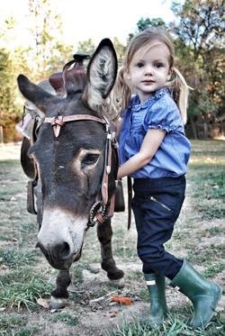 Donkey Walk