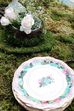 Floral Plates From London
