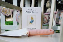 Classic Beatrix Potter Book