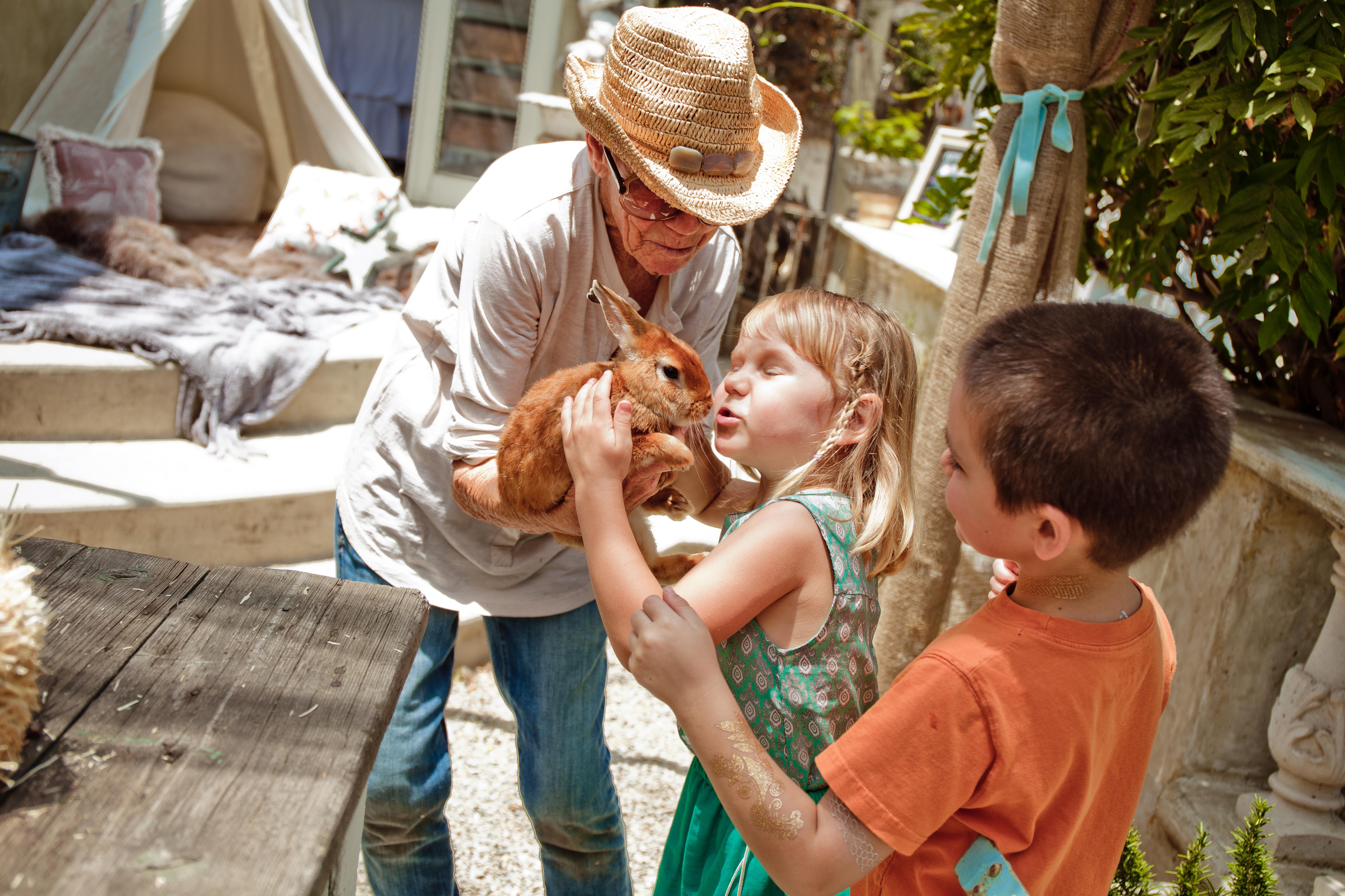 VIP Petting Farm