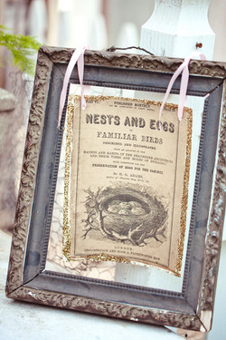 Nests & Eggs  Vintage Sign