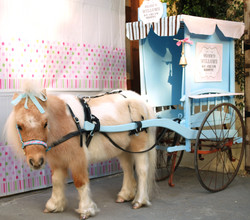 Willow & Ice Cream Cart