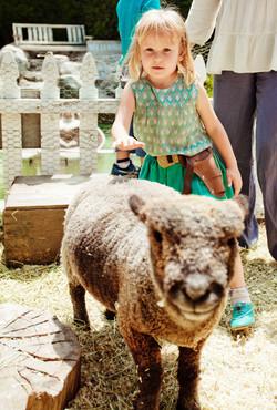 Smiling Sheep Wilder