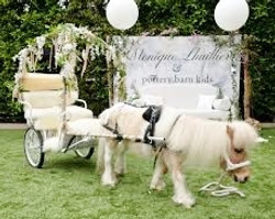Chariot for POTTERY BARN KIDS