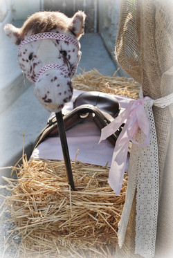 Stick Horse Straw Bale & Saddle